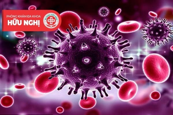 Virus HPV gây bệnh sùi mào gà