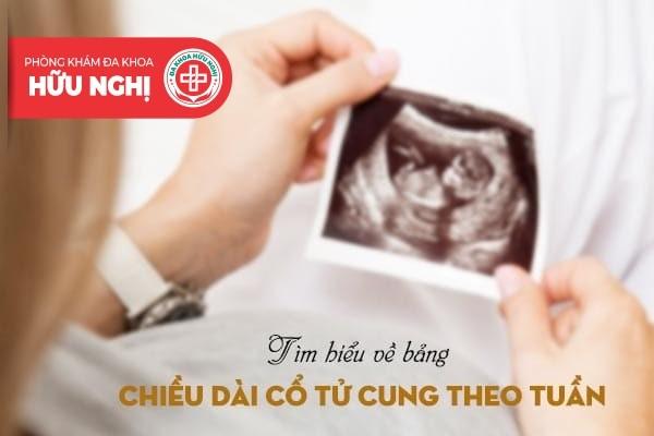 Bảng chiều dài cổ tử cung theo tuần thai